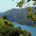 ruta ciclismo san pedro alcántara a Istán